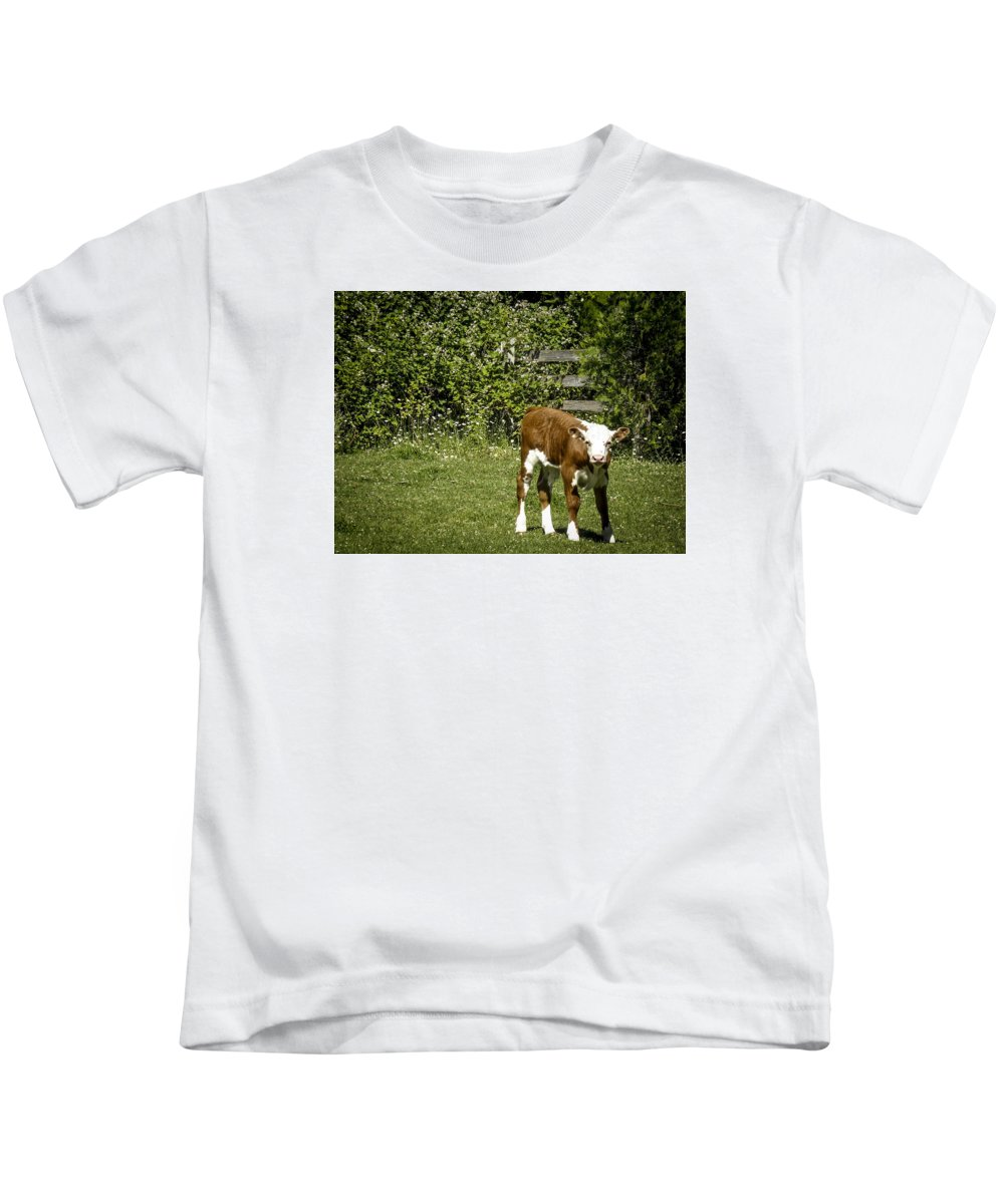 Kids T-Shirt featuring the photograph Baby Calf 2 by Reed Tim