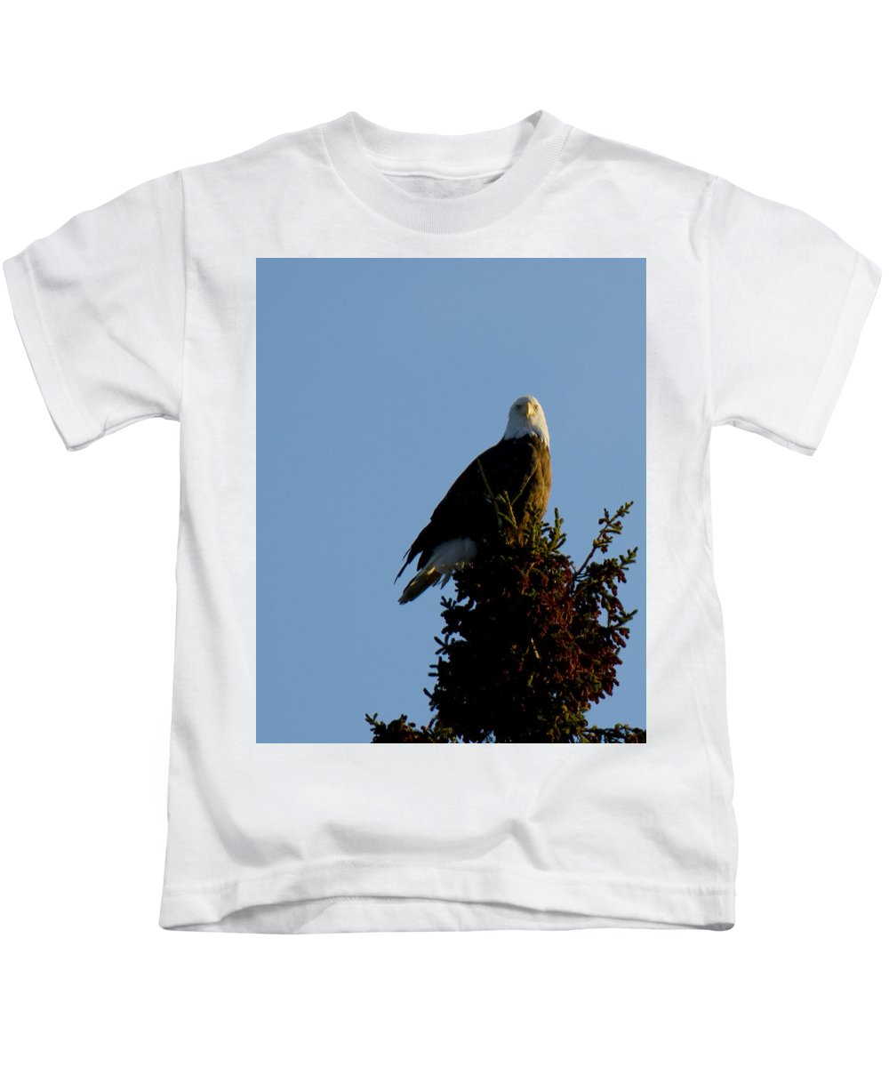 Eagle Kids T-Shirt featuring the photograph Bald Eagle by Tammy Hankins