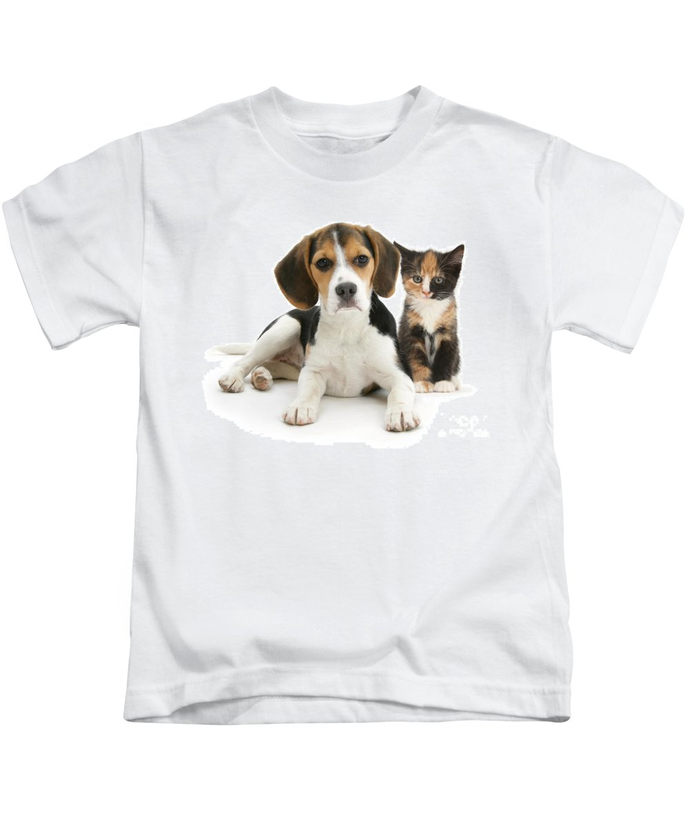 Animal Kids T-Shirt featuring the photograph Beagle And Calico Cat by Mark Taylor