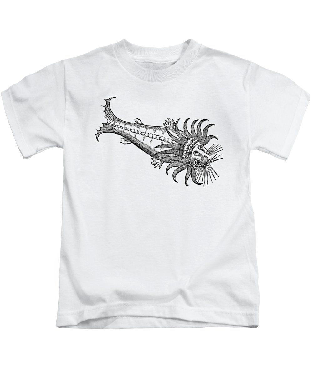 1604 Kids T-Shirt featuring the photograph Bearded Whale by Granger