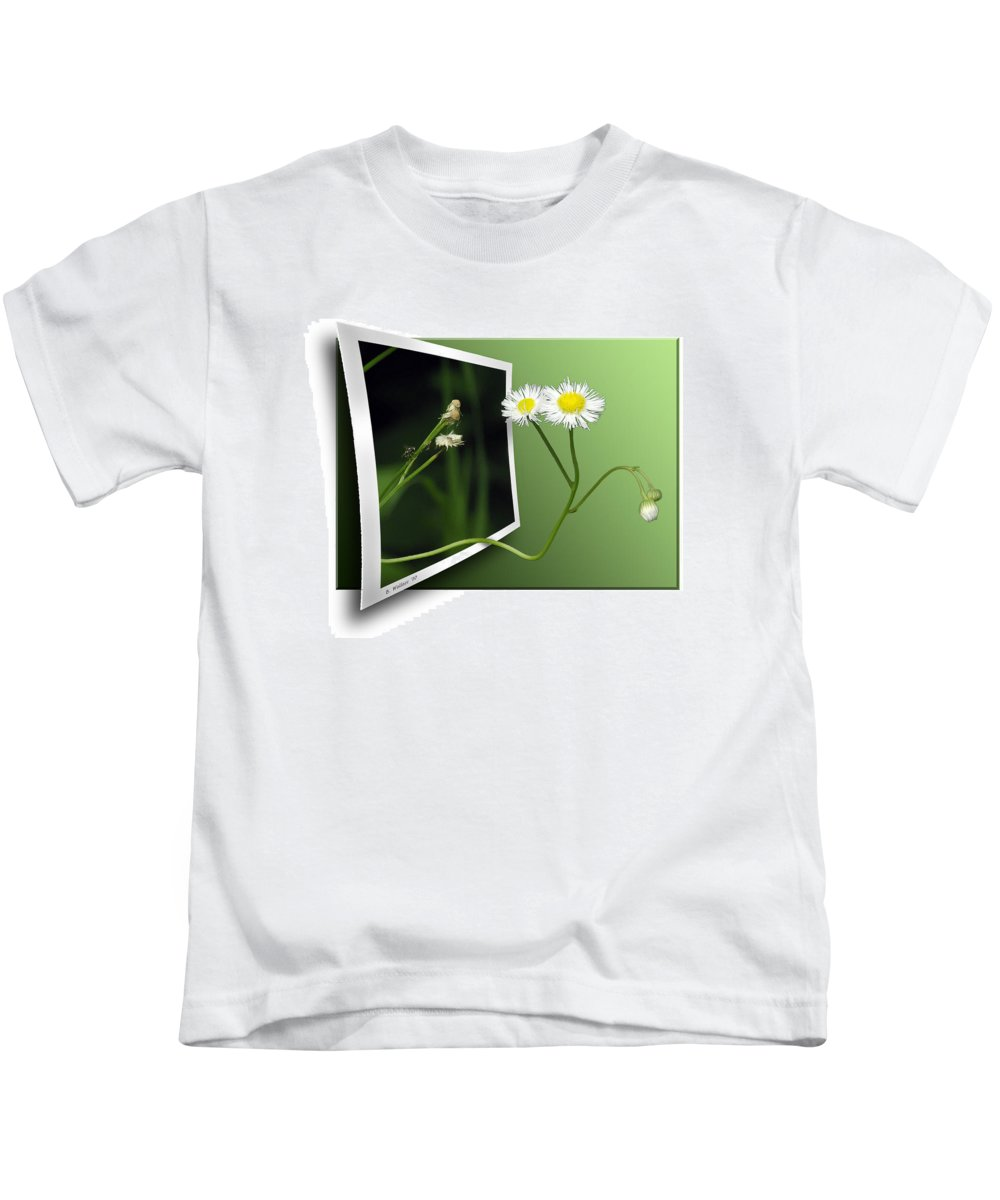 2d Kids T-Shirt featuring the photograph Beyond The No Fly Zone by Brian Wallace