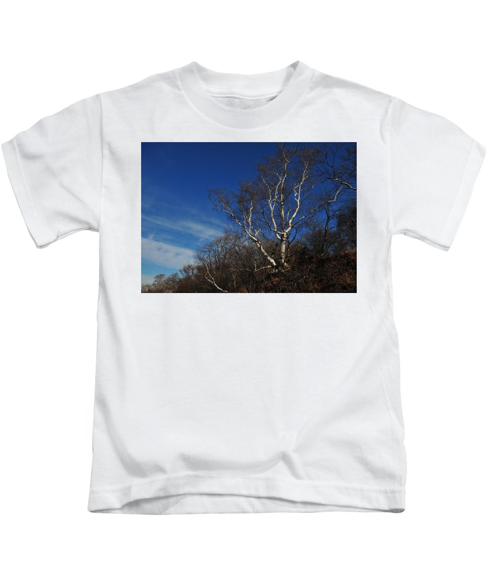 Birch On A Cliff Squaw Rock Quincy Ma Kids T-Shirt featuring the photograph Birch On A Cliff by Bill Driscoll