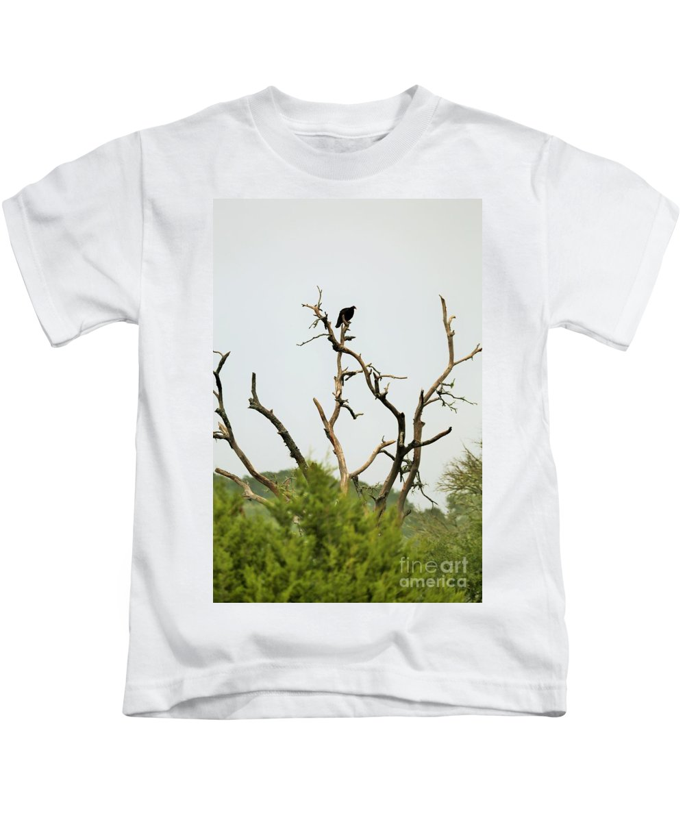 Kids T-Shirt featuring the photograph Bird011 by Jeff Downs
