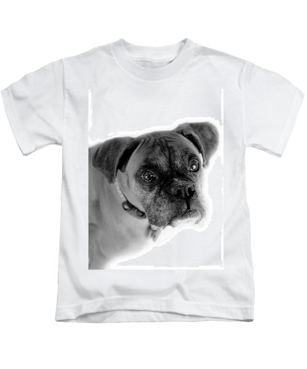 Boxer Kids T-Shirt featuring the photograph Boxer Dog by Marilyn Hunt