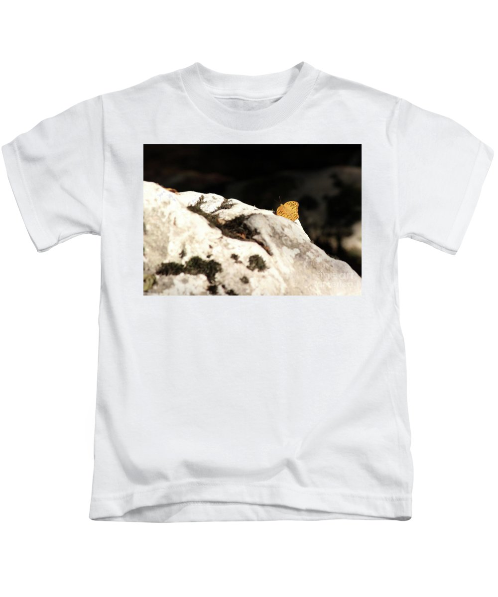 Butterfly Kids T-Shirt featuring the photograph Butterfly Standing On Rock by Goce Risteski
