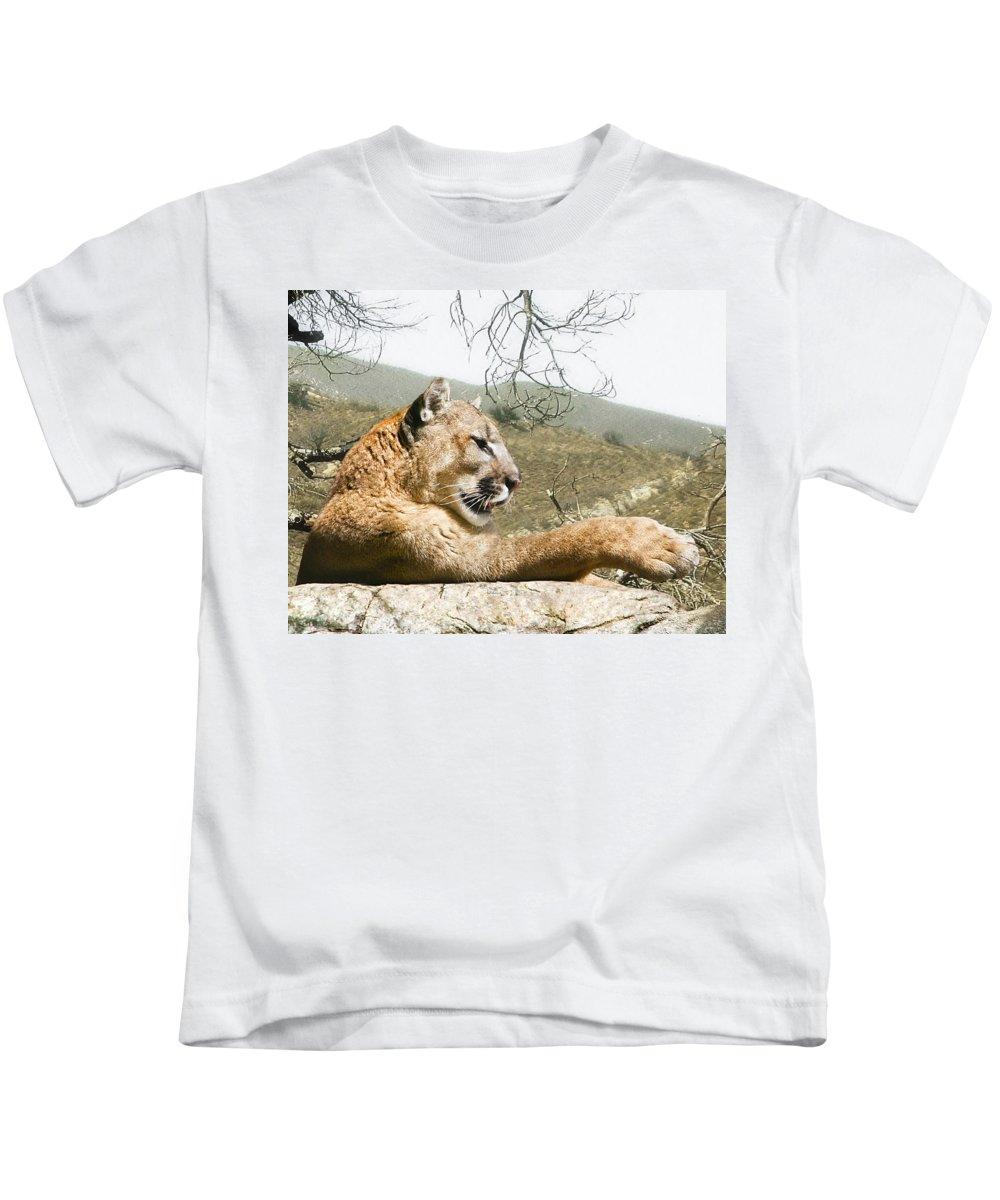 Cougar Kids T-Shirt featuring the photograph California Cougar by Lynn Andrews