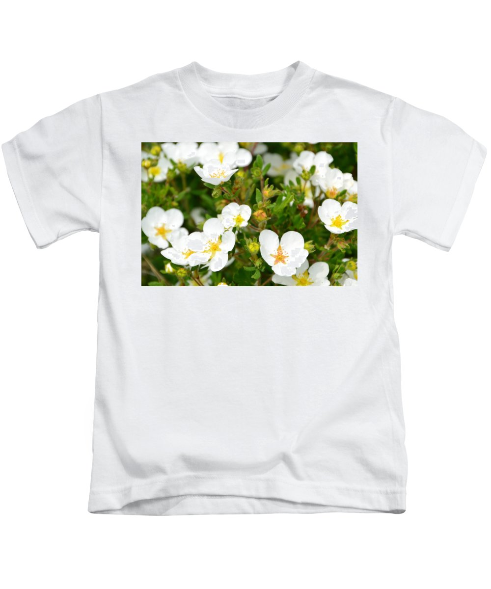 Flowers Kids T-Shirt featuring the photograph Catching The Sun by Katerina Naumenko
