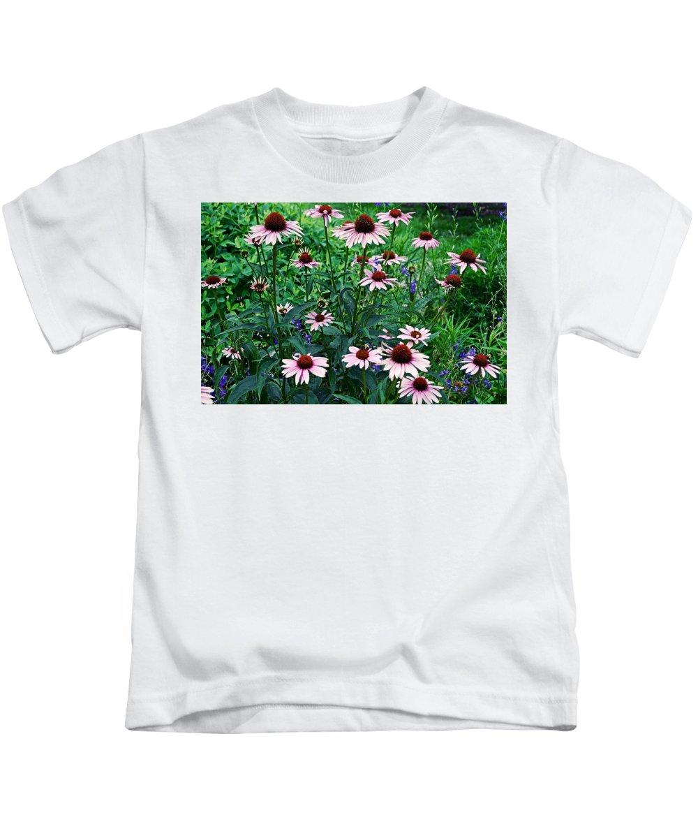 Coneflowers Kids T-Shirt featuring the photograph Coneflower Garden by James DeFazio