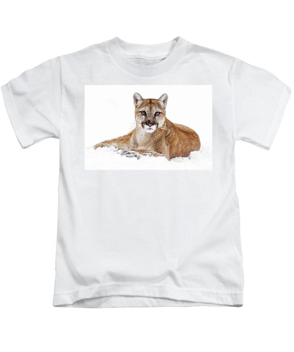 Cougar On White Kids T-Shirt featuring the photograph Cougar On White by Wes and Dotty Weber