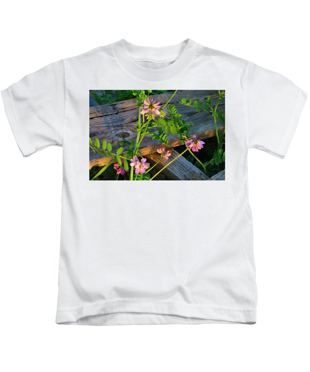 Crownvetch Kids T-Shirt featuring the photograph Crown Vetch 2 by Kathryn Meyer