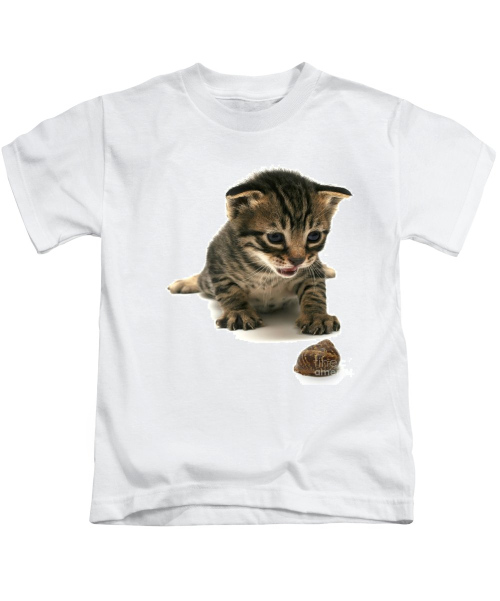 Cat Kids T-Shirt featuring the photograph Curious Kitten by Yedidya yos mizrachi