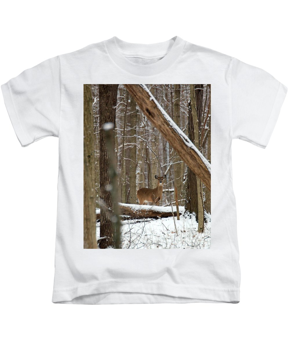 Deer Kids T-Shirt featuring the photograph Deep Woods Deer by Steve Gass