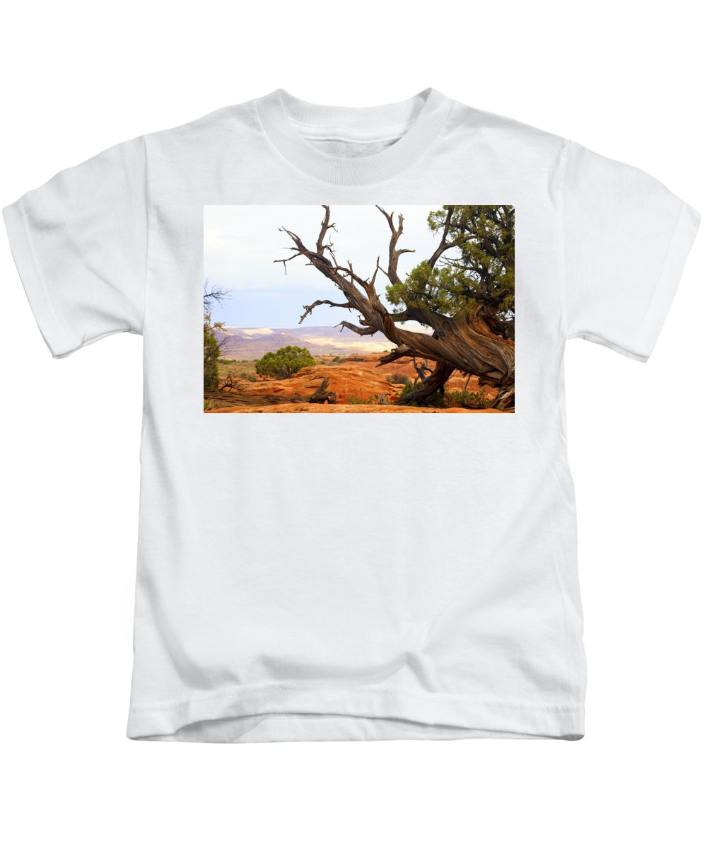 Southwest Art Kids T-Shirt featuring the photograph Devils Garden 2 by Marty Koch