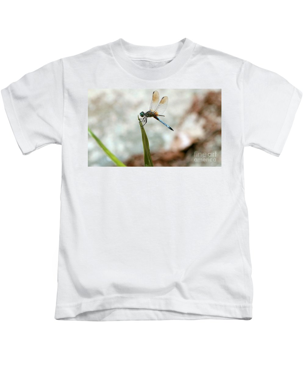 Insect Kids T-Shirt featuring the photograph Dragonfly At Cypress Gardens by Randy Matthews