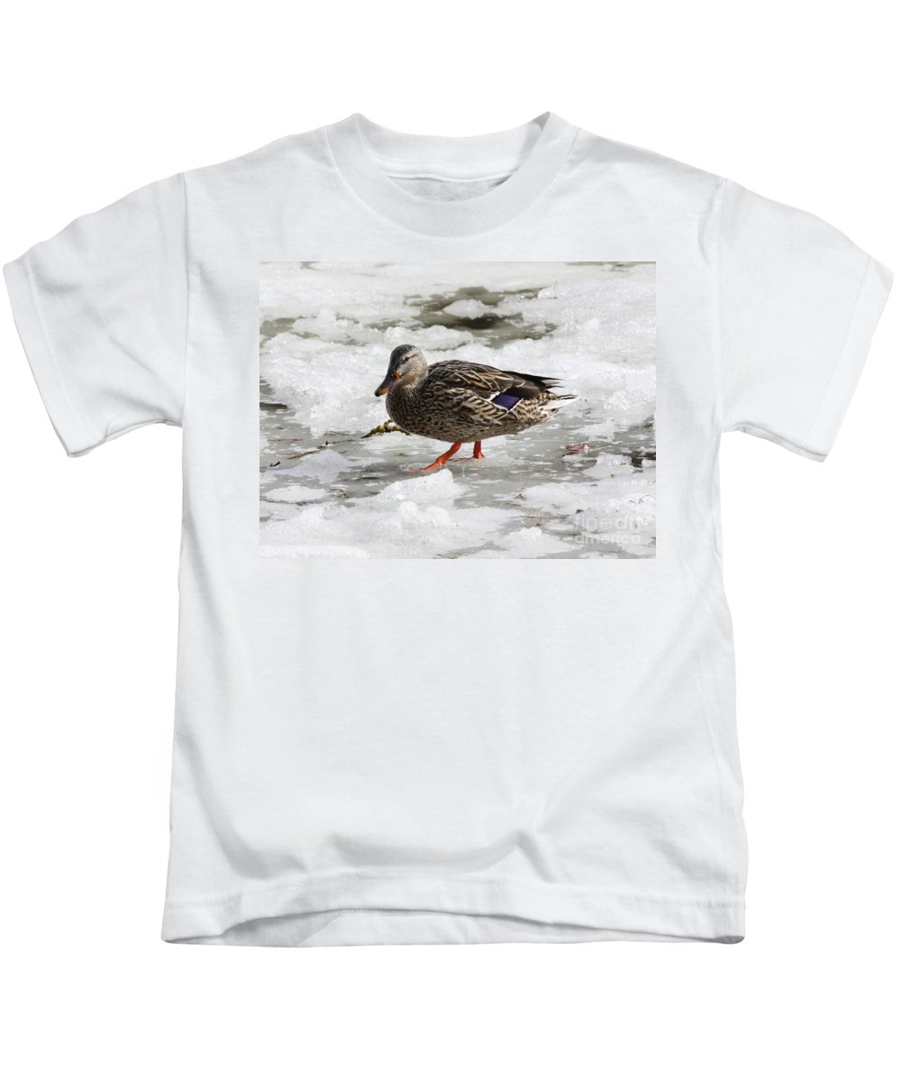Duck Kids T-Shirt featuring the photograph Duck Walking On Thin Ice by Carol Groenen