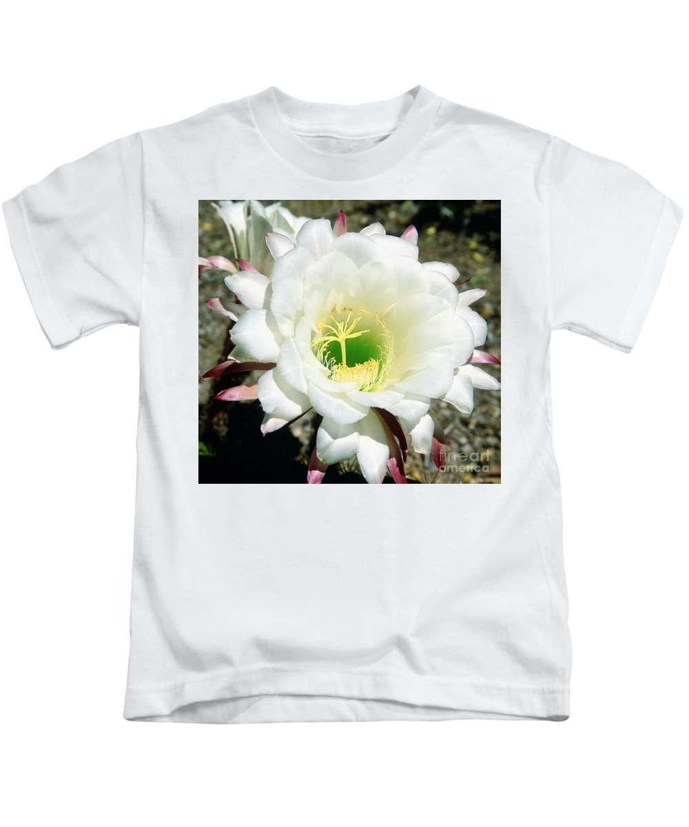 Wildflowers Kids T-Shirt featuring the photograph Easter Lily Cactus Flower by Kathy McClure