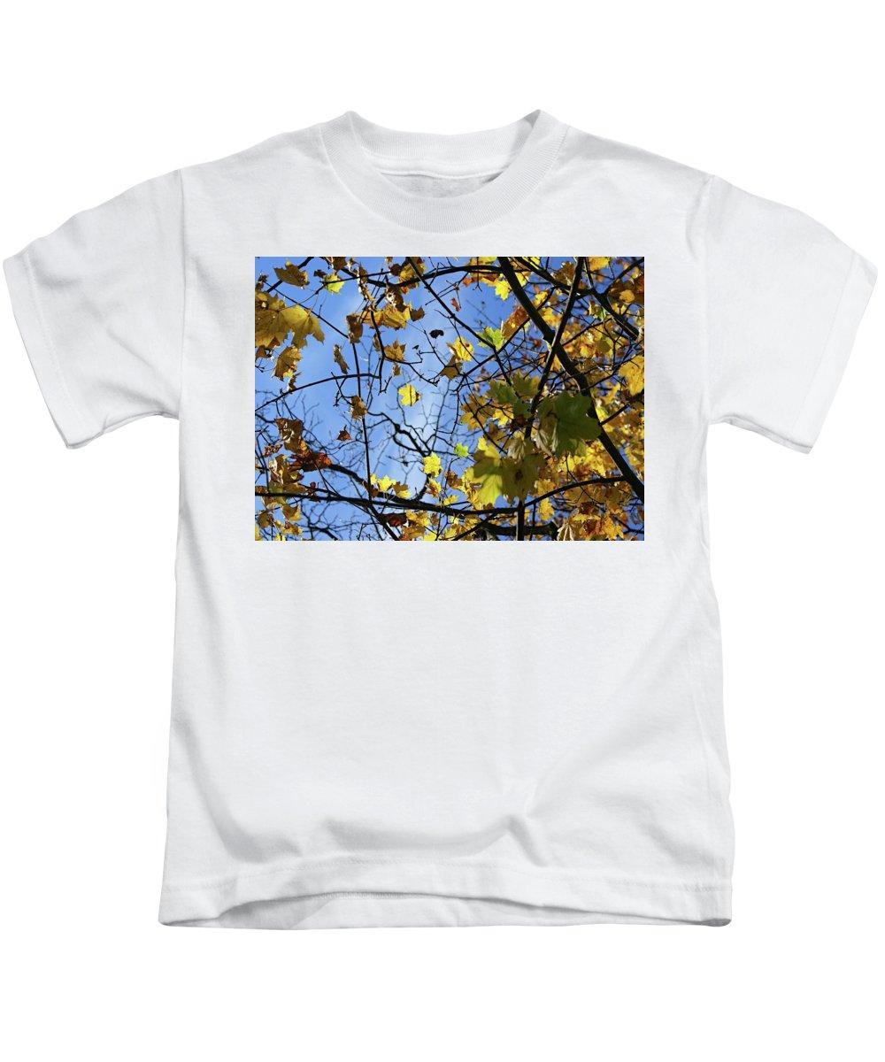Blue Kids T-Shirt featuring the photograph Fall by Amanda Camarata