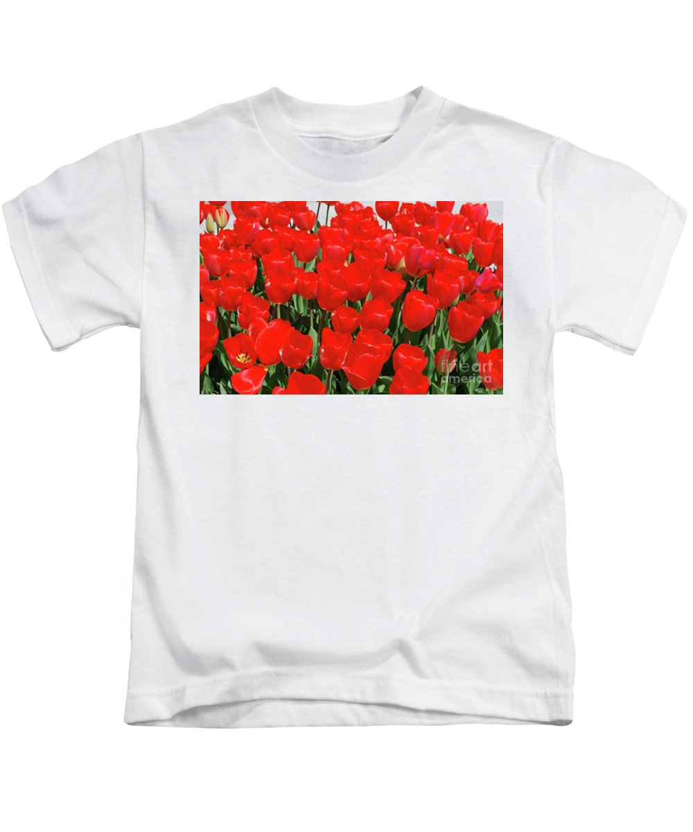 Tulip Kids T-Shirt featuring the photograph Field Of Brilliant Red Tulip Flowers In A Garden by DejaVu Designs