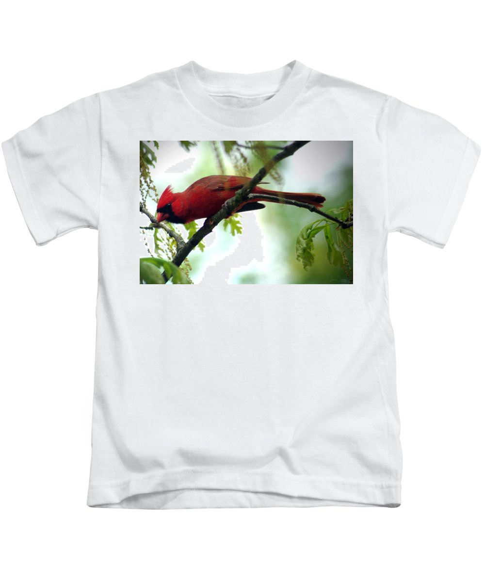 Jenny Gandert Kids T-Shirt featuring the photograph Flight Preparation by Jenny Gandert