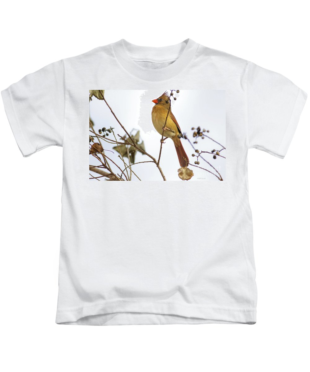Cardinal Kids T-Shirt featuring the photograph Florida Cardinal by Deborah Benoit