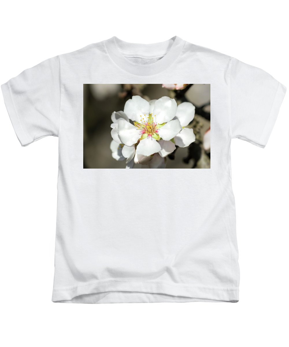 Kids T-Shirt featuring the photograph Flowering Fruit Tree by Doug Holck
