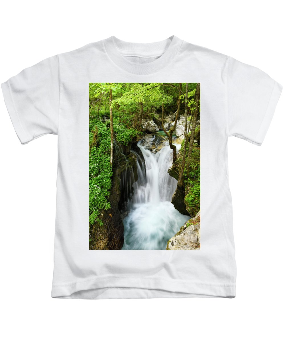 Sunikov Vodni Gaj Kids T-Shirt featuring the photograph Fresh Green Forest In Spring At Lepenica River Gorge At Sunikov by Reimar Gaertner