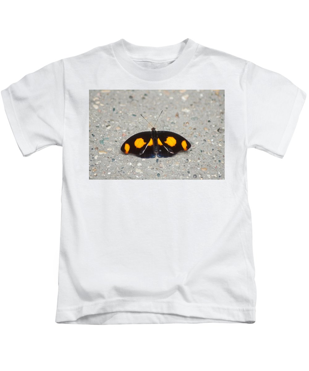 Catonephele Numilia Kids T-Shirt featuring the photograph Grecian Shoemaker by Ginger Harris