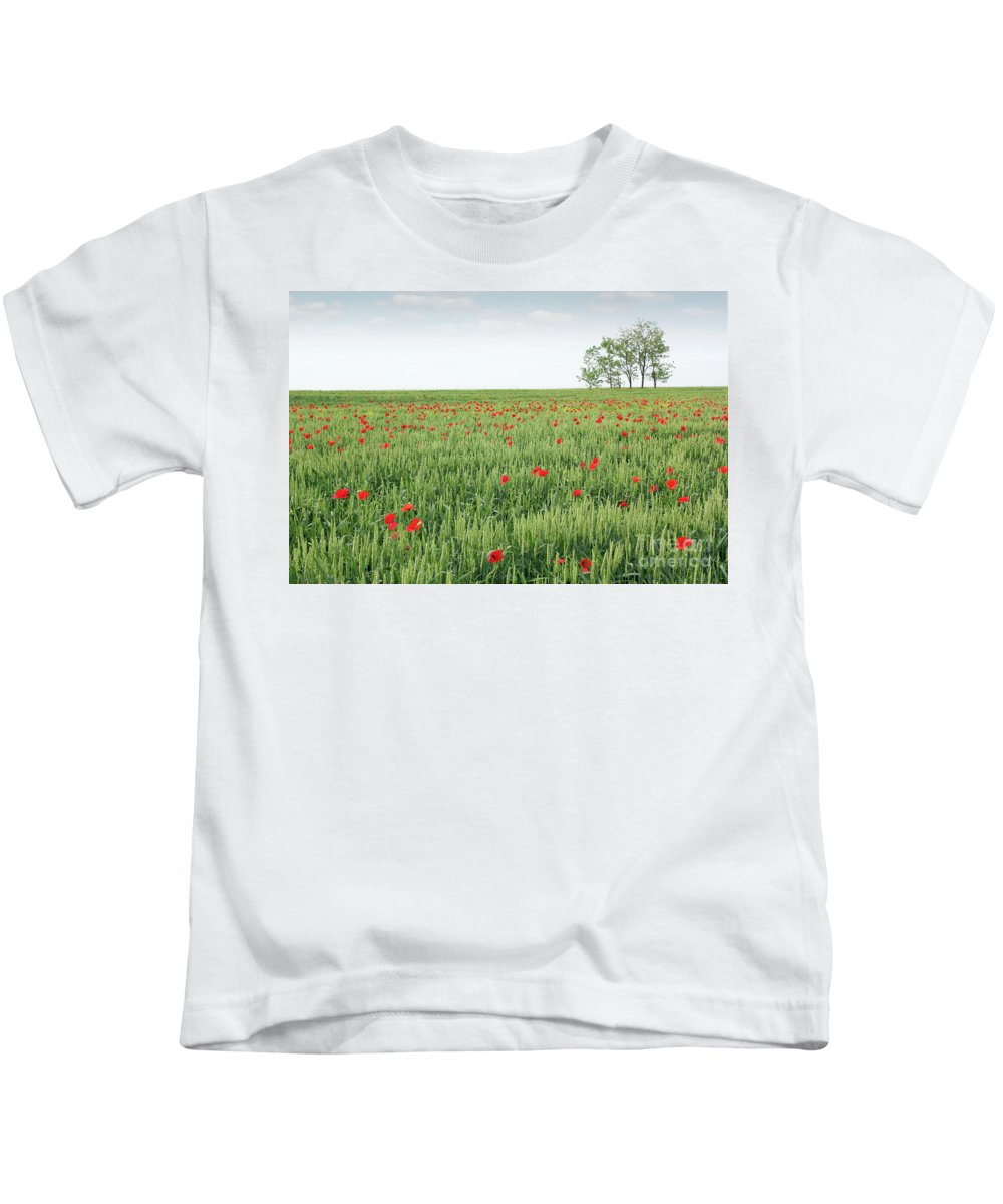 Wheat Kids T-Shirt featuring the photograph Green Wheat Field Spring Scene by Goce Risteski