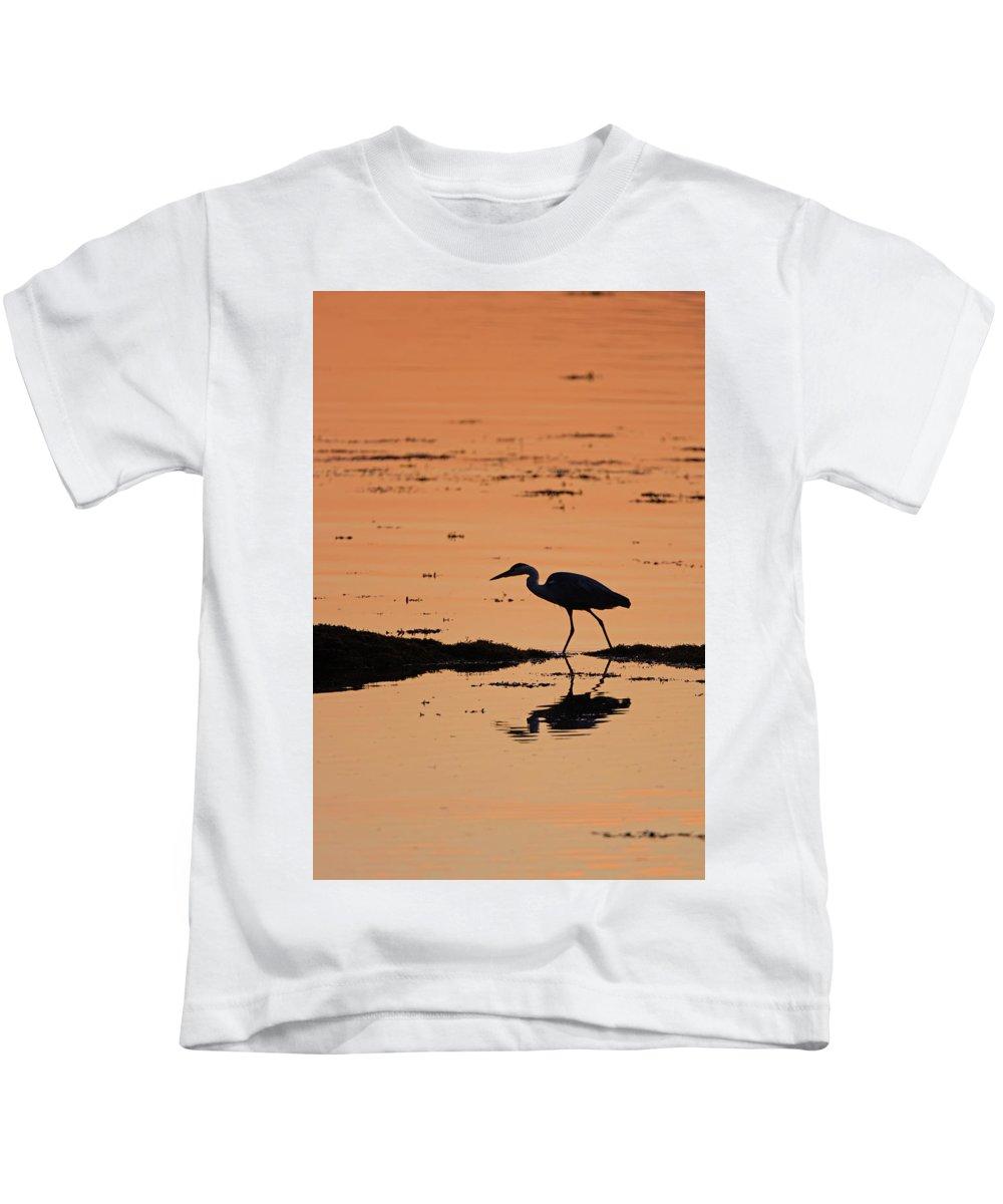 Grey Kids T-Shirt featuring the photograph Grey Heron Sunset by Peter Walkden