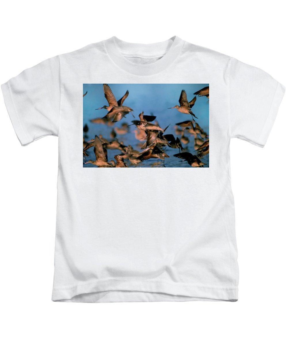 Bird Kids T-Shirt featuring the photograph Group Flight by Robert Carlsen