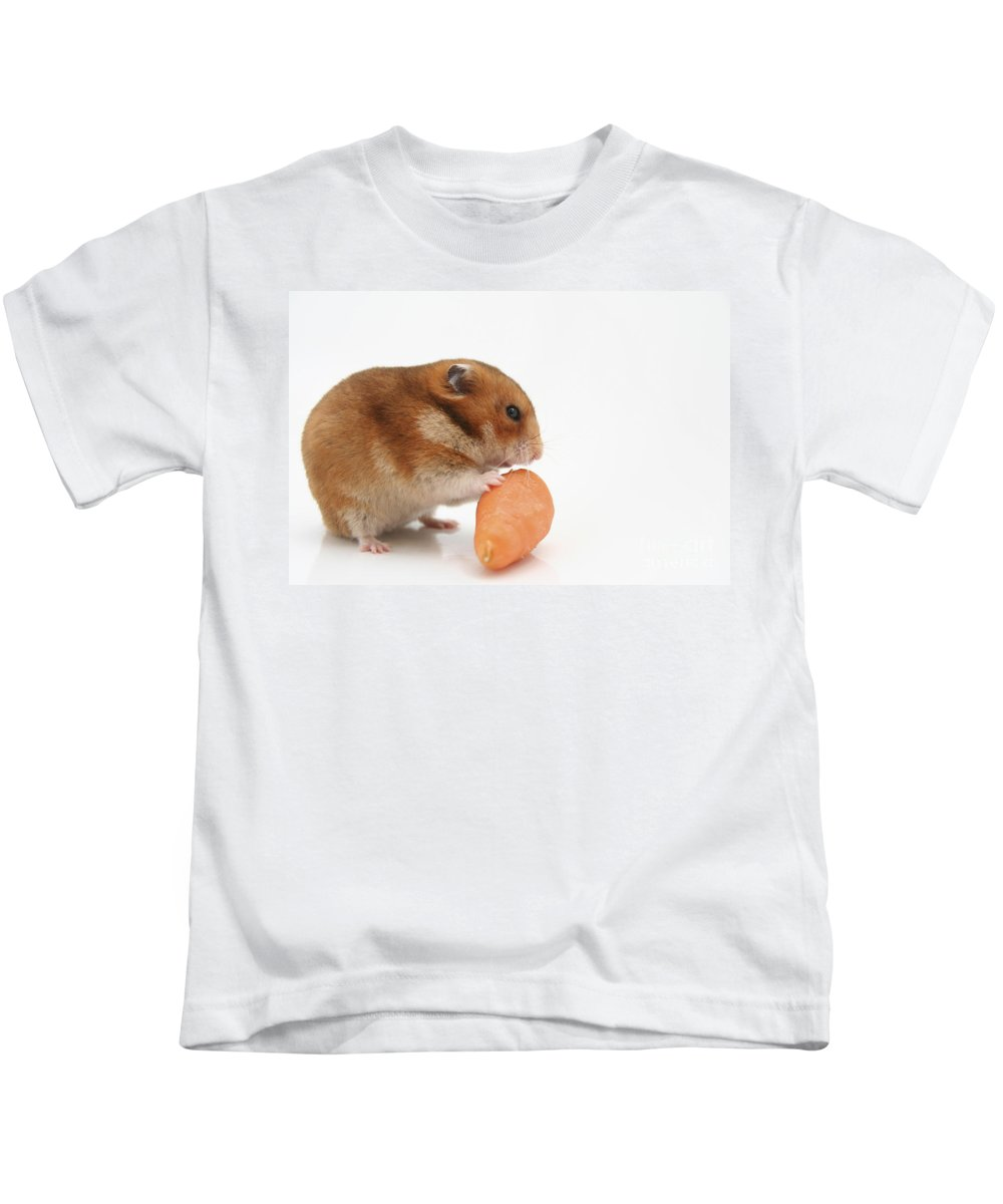 Hamster Kids T-Shirt featuring the photograph Hamster Eating A Carrot by Yedidya yos mizrachi
