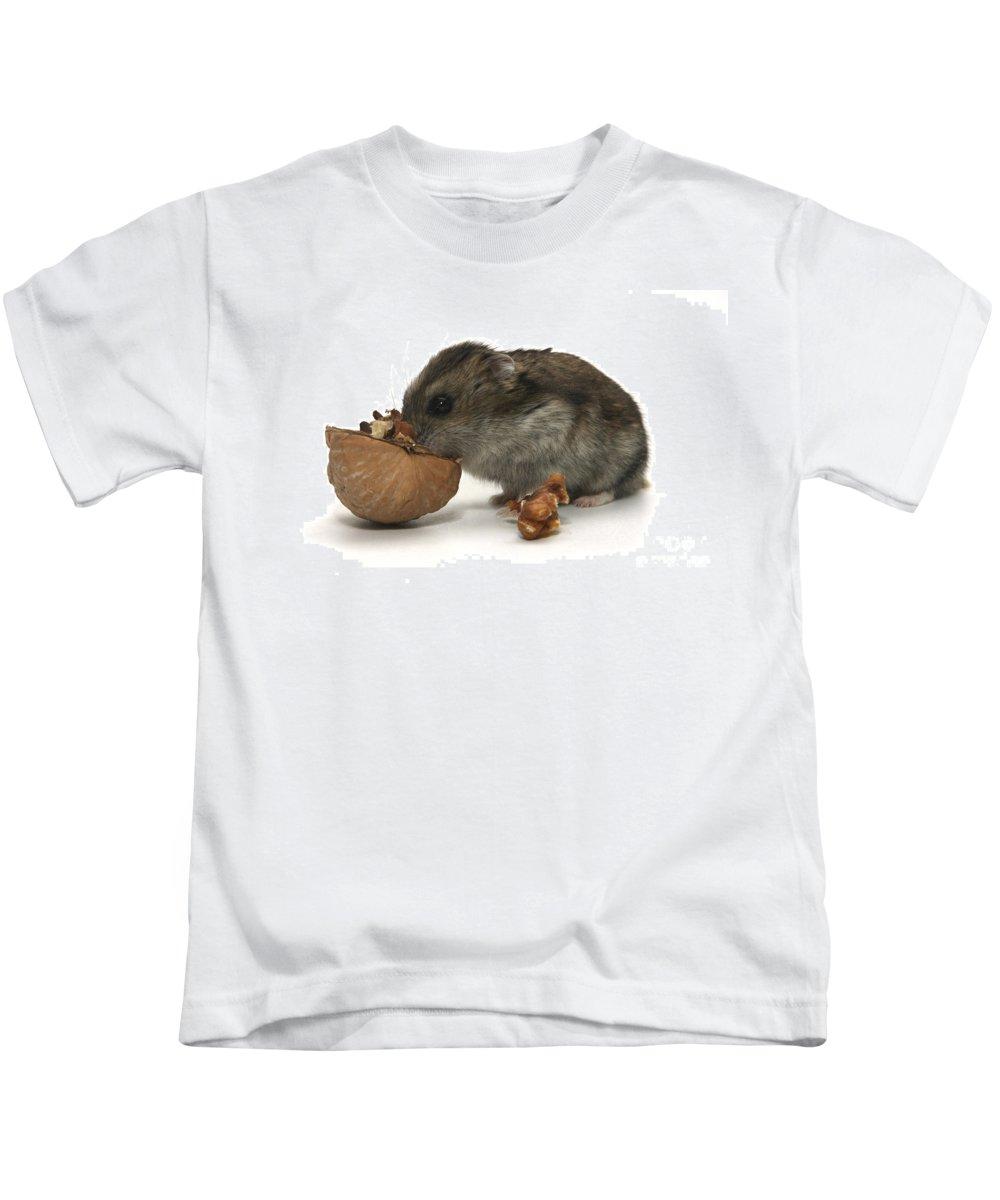Hamster Kids T-Shirt featuring the photograph Hamster Eating A Walnut by Yedidya yos mizrachi