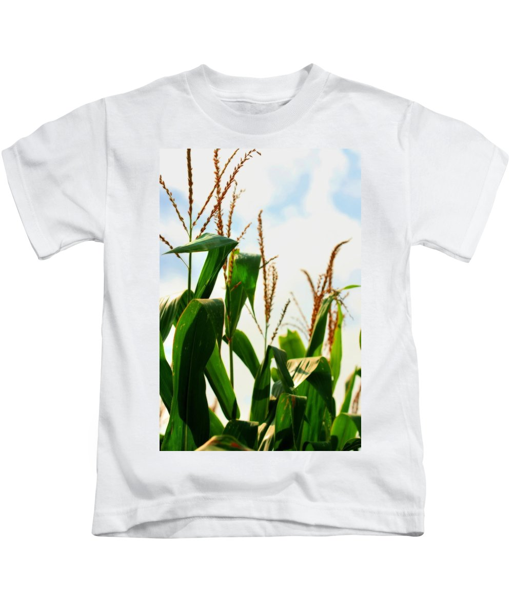 Farm Kids T-Shirt featuring the photograph Harvest Corn Stalks by Angela Rath