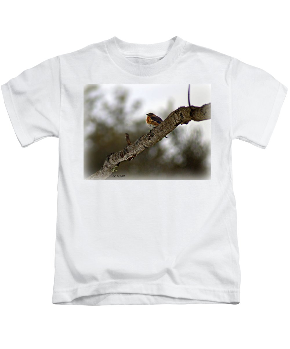 Cold Kids T-Shirt featuring the photograph Huddled Bluebird by Catherine Melvin