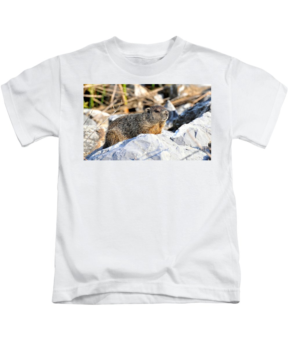 Ground Hog Kids T-Shirt featuring the photograph Just Relaxing by Todd Hostetter