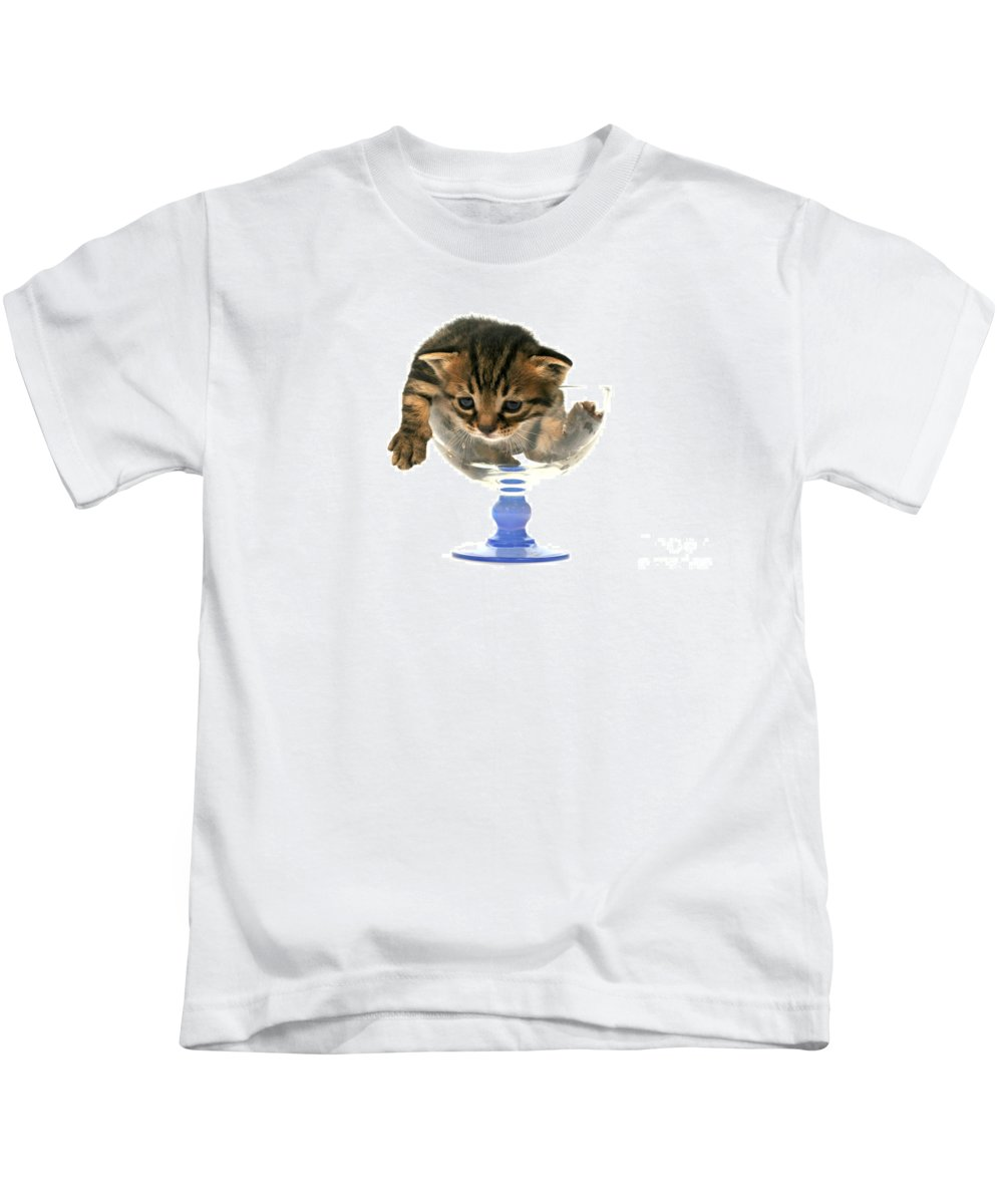 Cat Kids T-Shirt featuring the photograph Kitten Sits In A Glass by Yedidya yos mizrachi