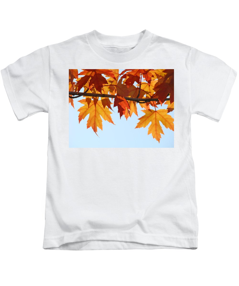 Autumn Kids T-Shirt featuring the photograph Leaves Autumn Orange Sunlit Fall Leaves Blue Sky Baslee Troutman by Baslee Troutman