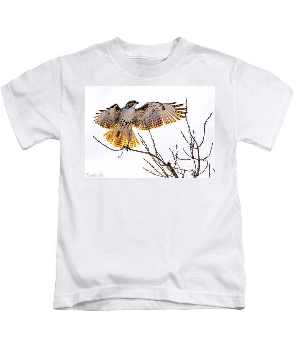 Hawk Kids T-Shirt featuring the photograph Leg Up by Dave Taylor
