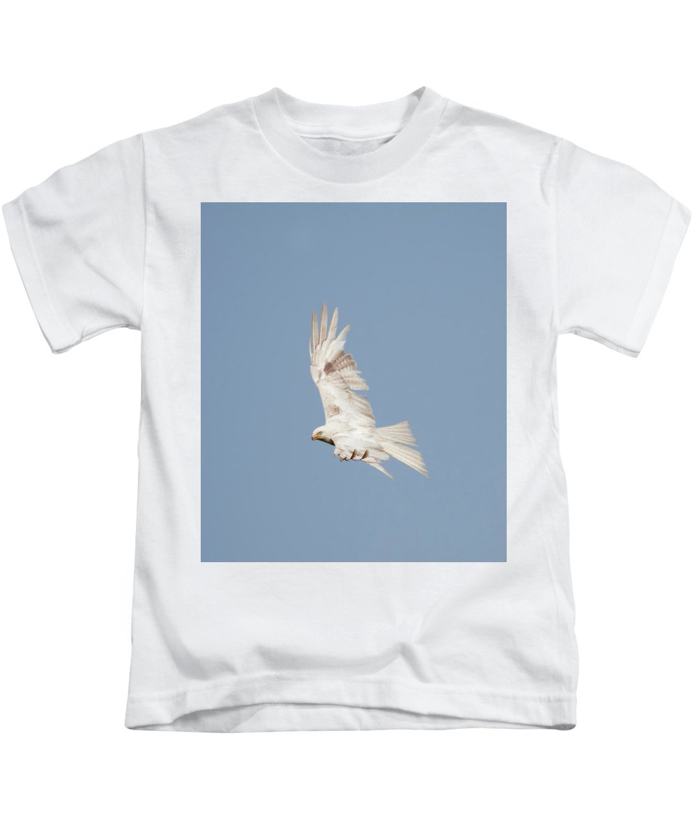Red Kids T-Shirt featuring the photograph Leucistic Red Kite by Peter Walkden