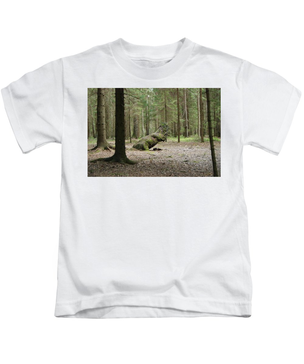 Forest Kids T-Shirt featuring the photograph Like A Dinosaur by Sergei Dolgov