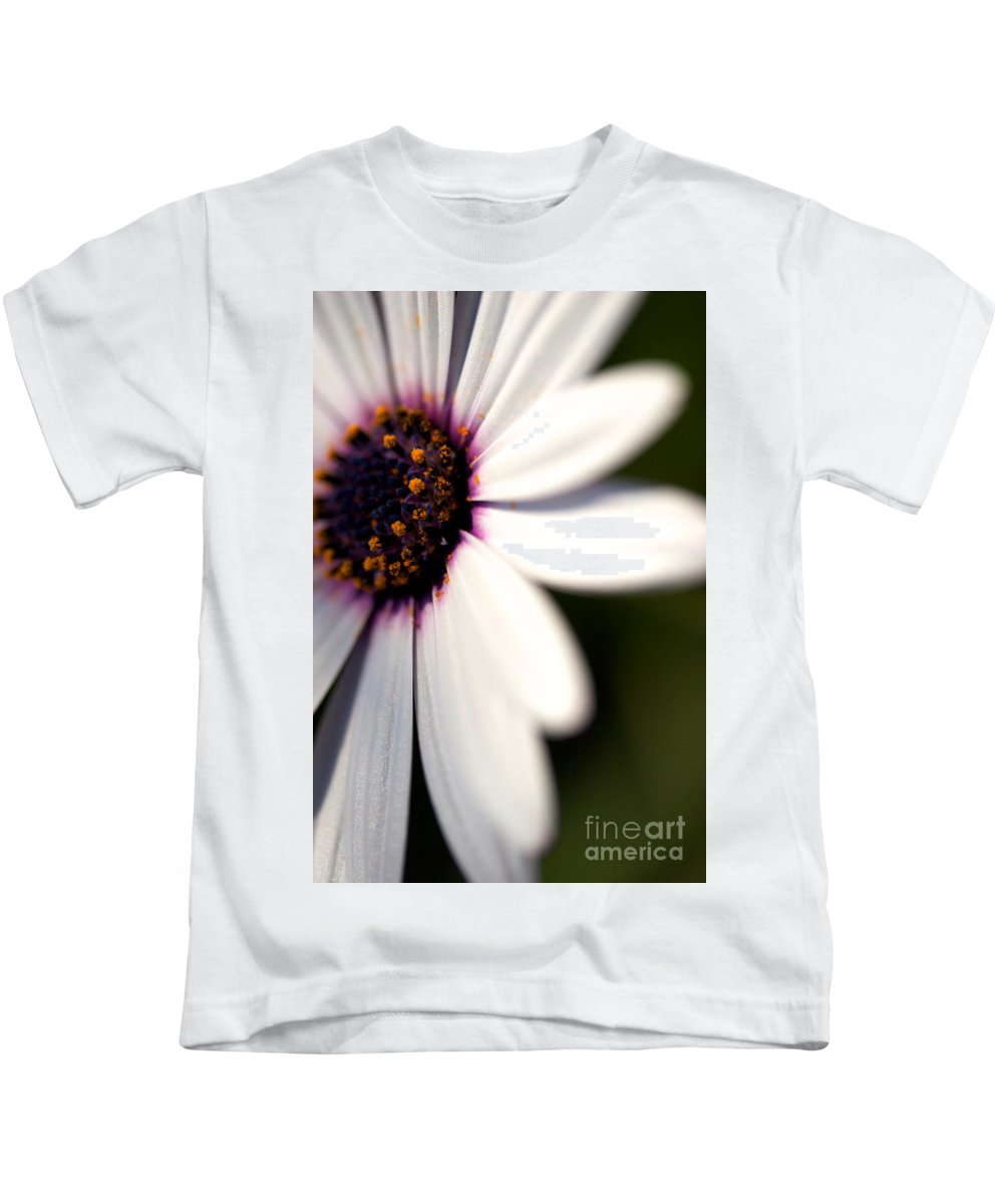 Daisy Flower Kids T-Shirt featuring the photograph Macro Daisy One by Brooke Roby