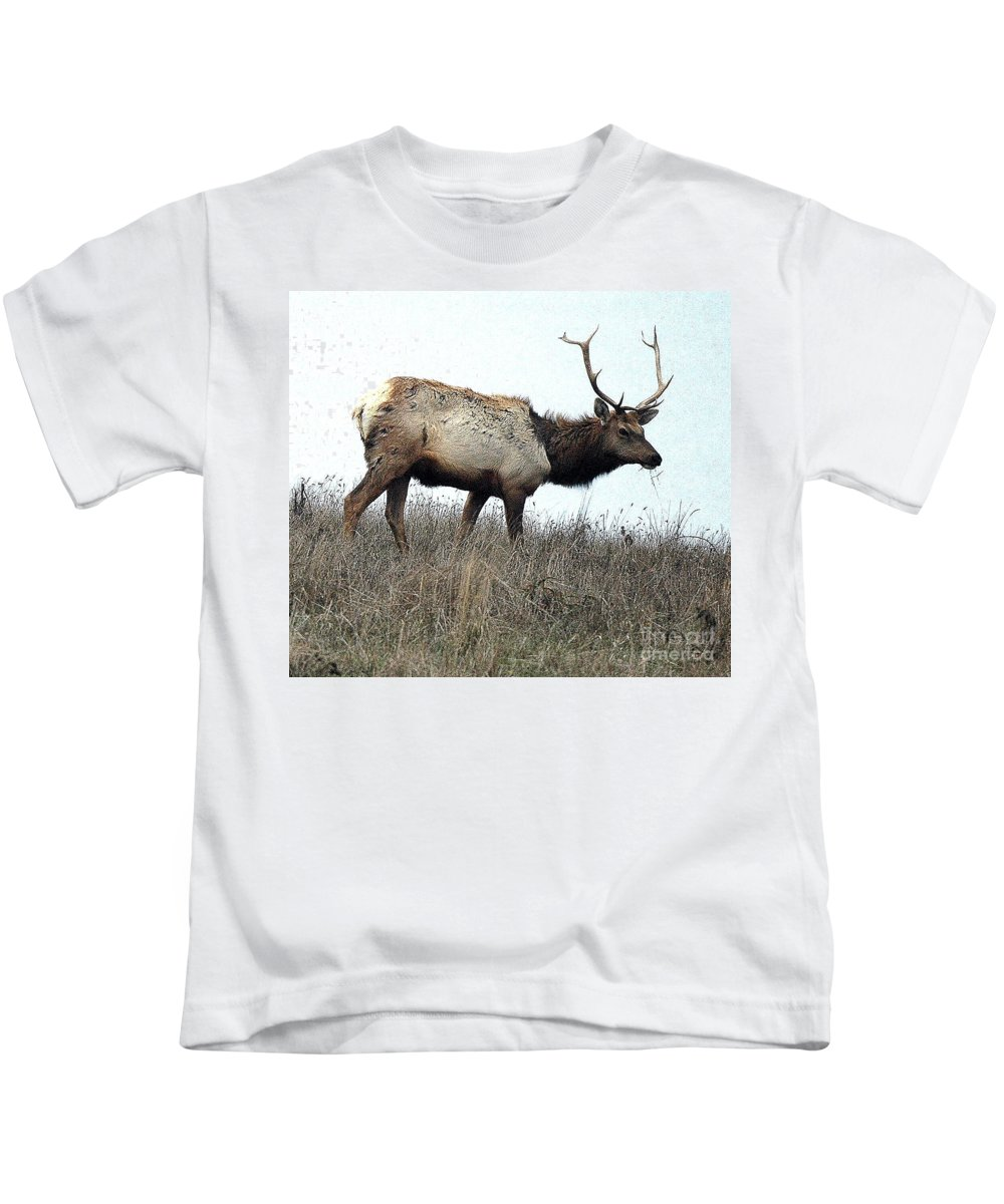 California Kids T-Shirt featuring the photograph Molting Tomales Bay Elk by Norman Andrus