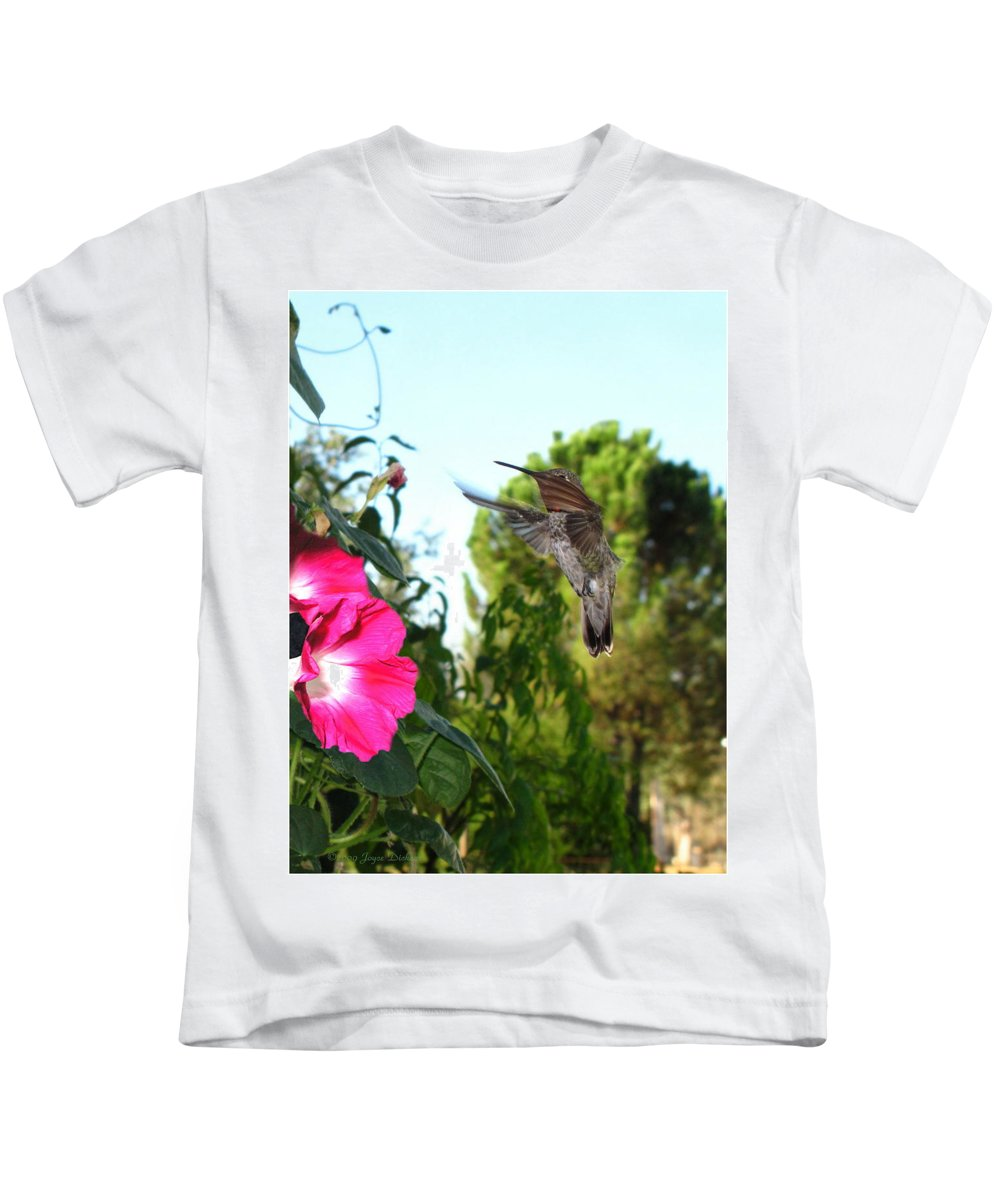 Bird Kids T-Shirt featuring the photograph Morning Glories And Humming Bird by Joyce Dickens