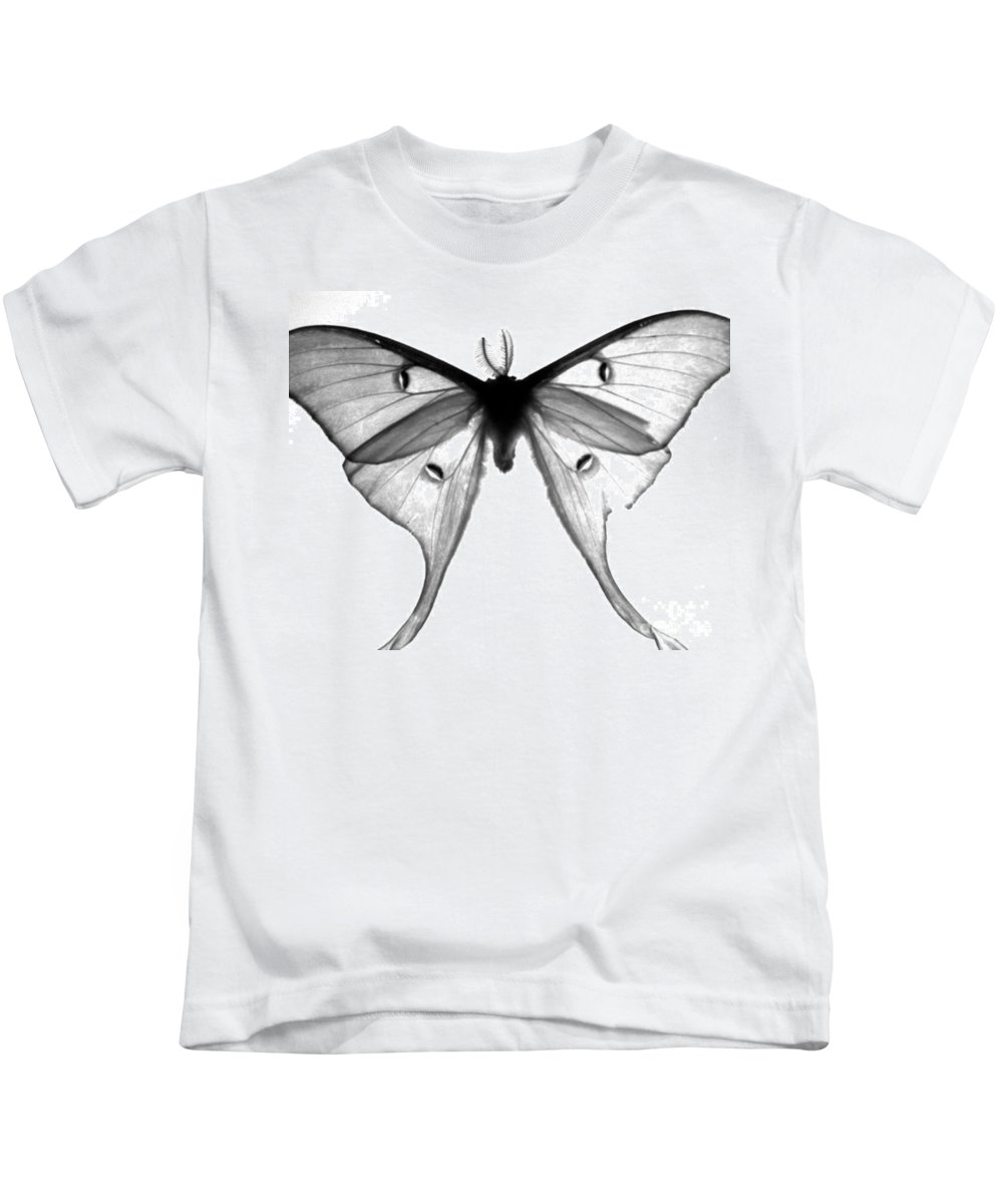 Moth Kids T-Shirt featuring the photograph Moth by Amanda Barcon