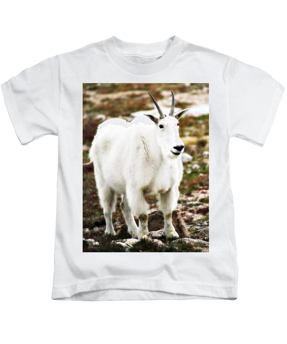Animal Kids T-Shirt featuring the photograph Mountain Goat by Marilyn Hunt