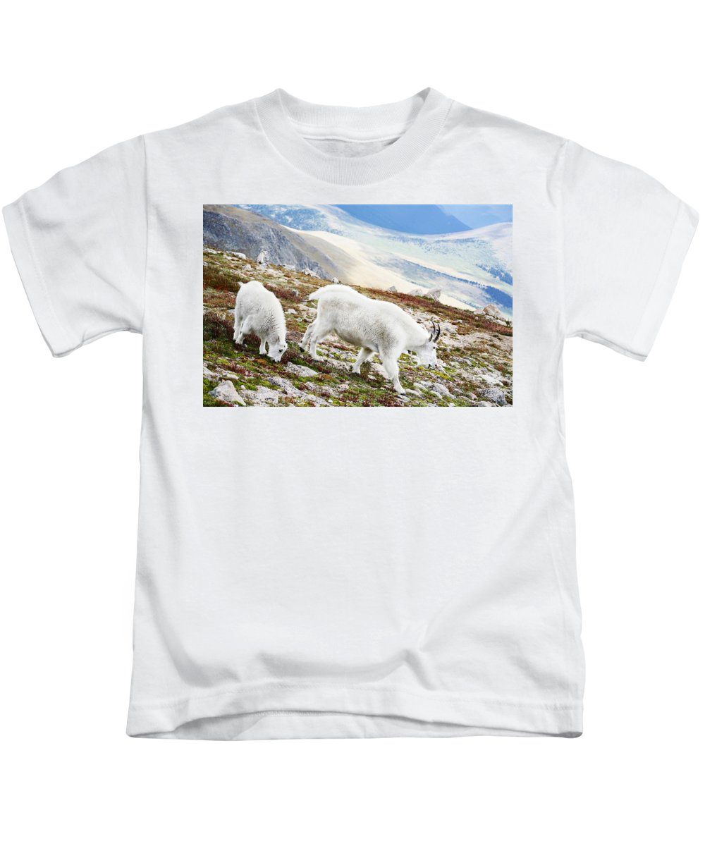 Mountain Kids T-Shirt featuring the photograph Mountain Goats 1 by Marilyn Hunt