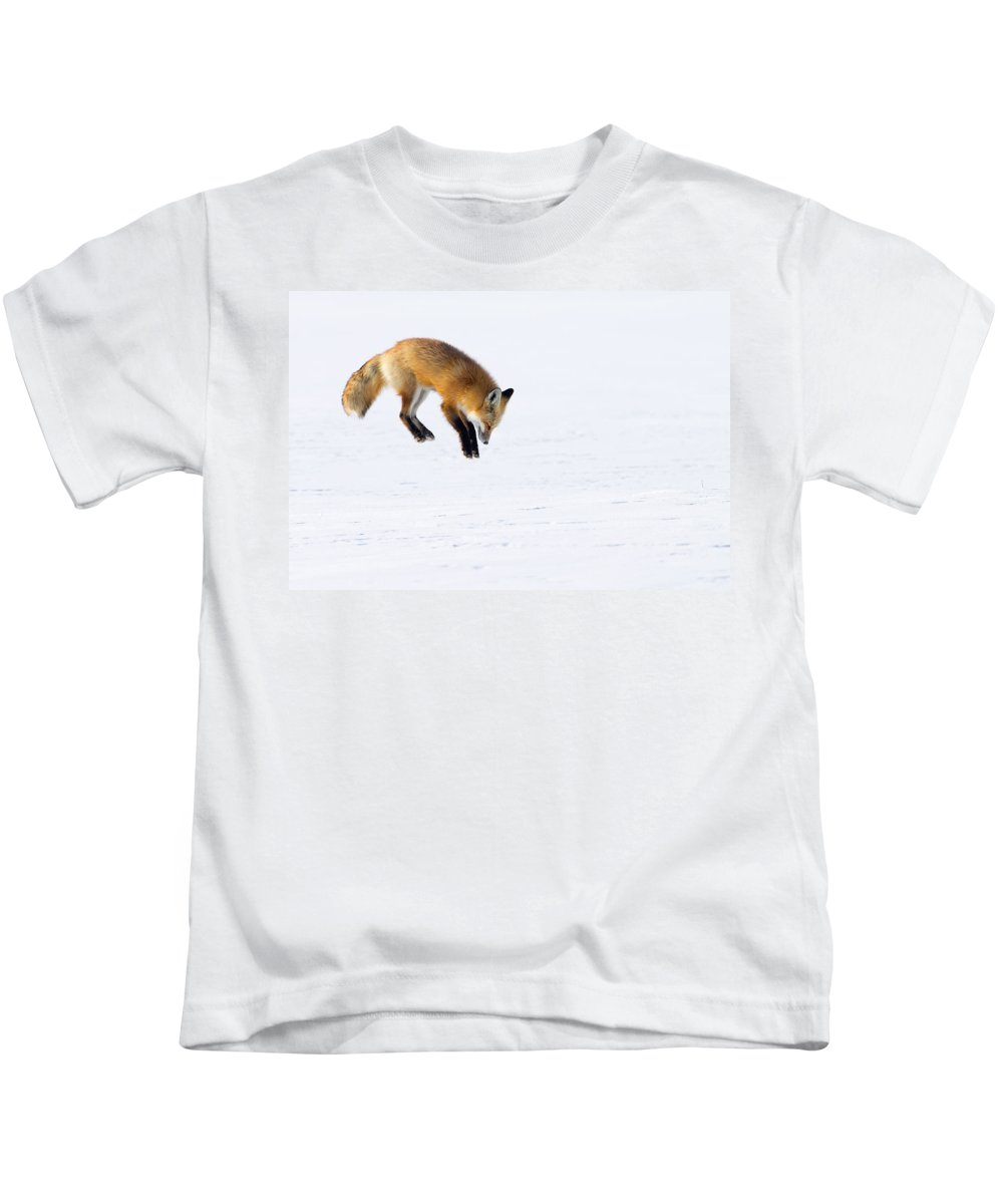Red Fox Kids T-Shirt featuring the photograph Mousing Fox by Max Waugh