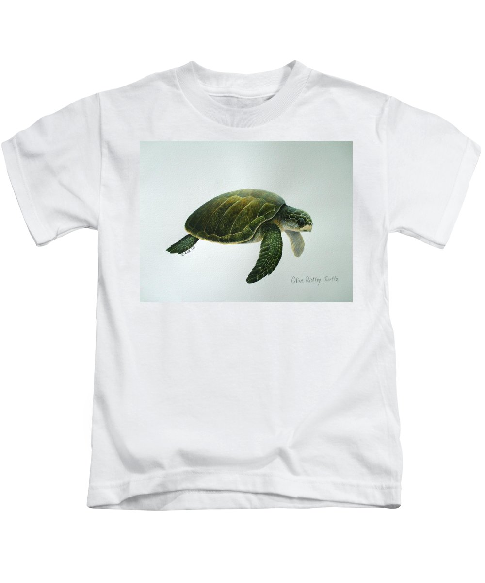 Olive Ridley Turtle Kids T-Shirt featuring the painting Olive Ridley Turtle by Christopher Cox