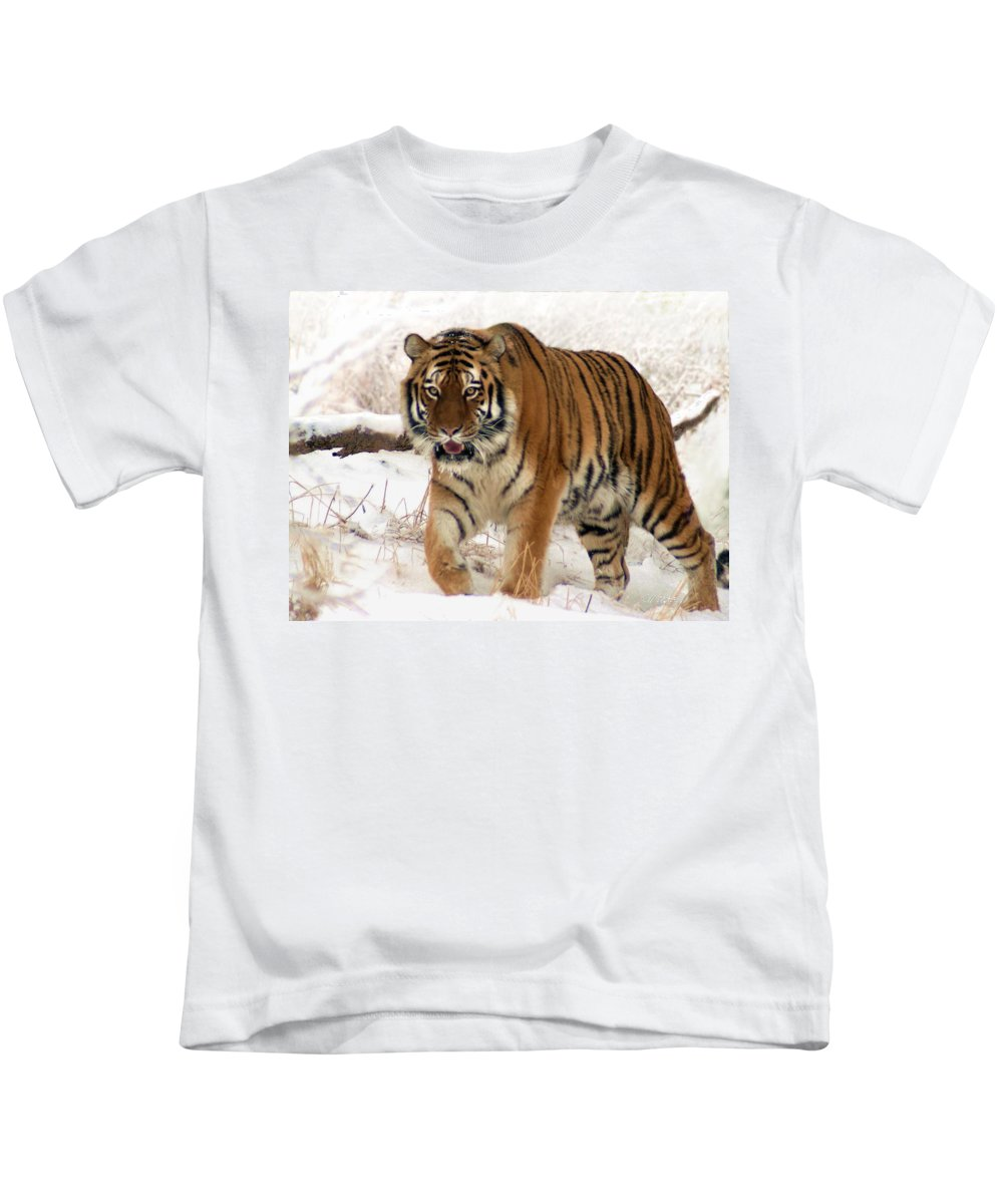 Tiger Kids T-Shirt featuring the photograph Orange In Winter by Bill Stephens