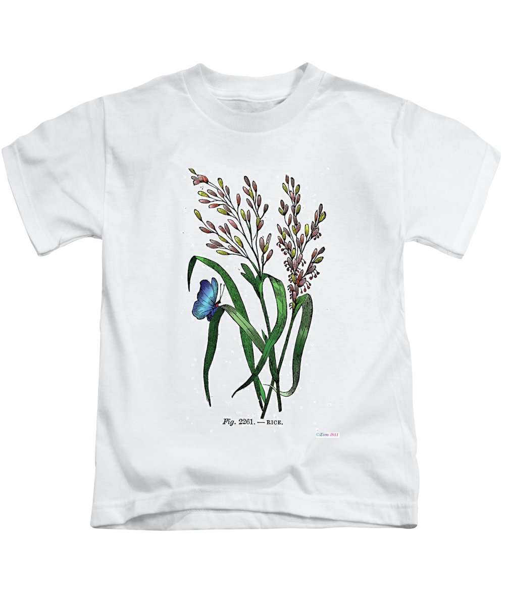Oryza Sativa Kids T-Shirt featuring the digital art Oryza Sativa by Ziva
